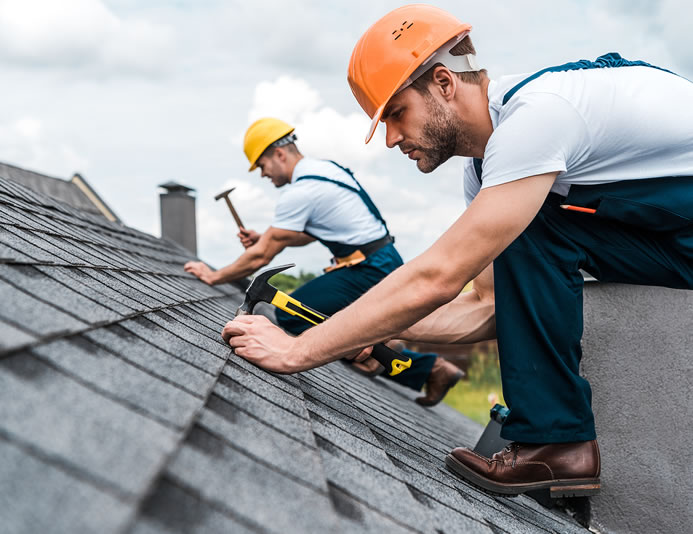 Tips For Removing Mold From Your Roof